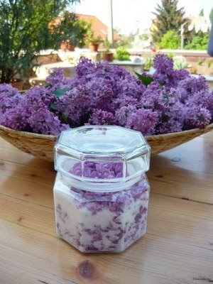 candied lilac.jpg