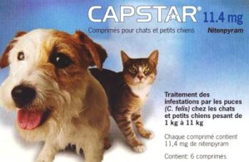 capstar-11-4mg-zoom.jpg