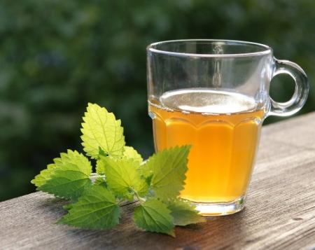 Nettle-Tea.jpg
