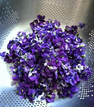 violetsyrup04.jpg