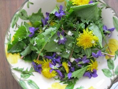 Wild-Spring-Salad.jpg