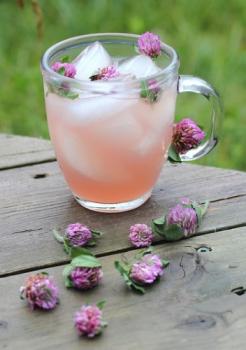 Red-Clover-Lemonade.jpg