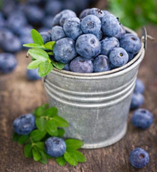 csm_fruits-automne-4_430692db95.jpg
