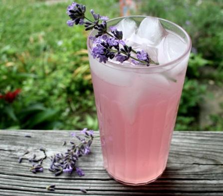 lavander-limonade-2.jpg